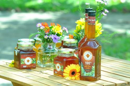 Mật ong hoa rừng – chiến lợi phẩm ngọt ngào dinh dưỡng
